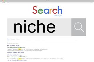understand your niche in blog articles